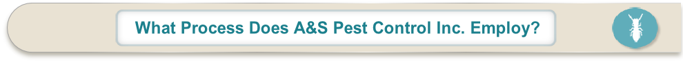 What Process Does A&S Pest Control Inc. Employ?